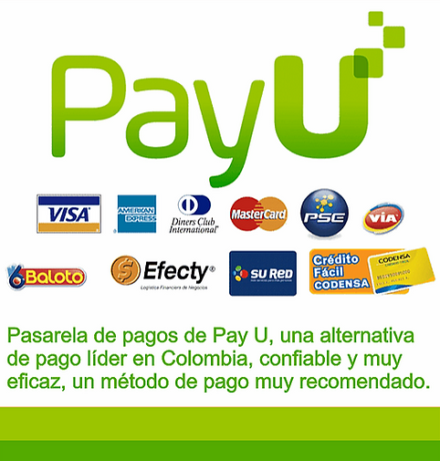 pay u.PNG