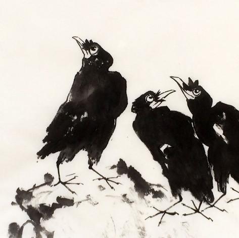 black birds inspiration Ren Bonian