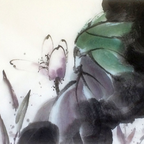 lotus and leaf