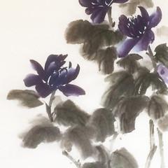 peony purple