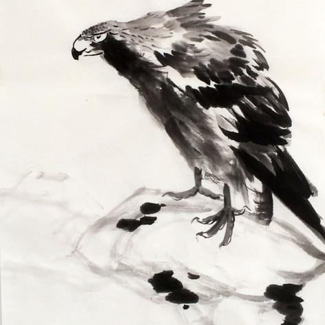 eagle inspiration Bada Shanren