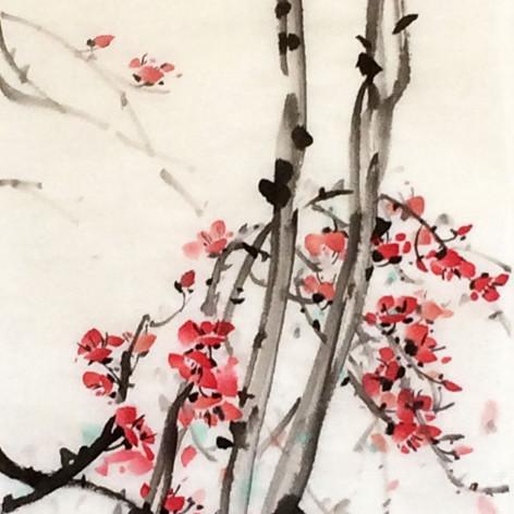 plum blossom in springtime