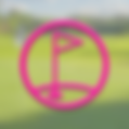 Flag-Pink.png