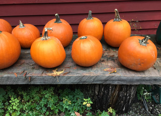 Fall Lantern Walk is almost here!