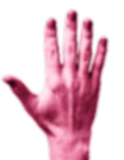 Human-Hands-Front-Back6.png