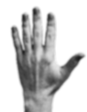 Human-Hands-Front-Back3.png