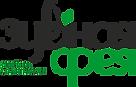 логотип-1.png