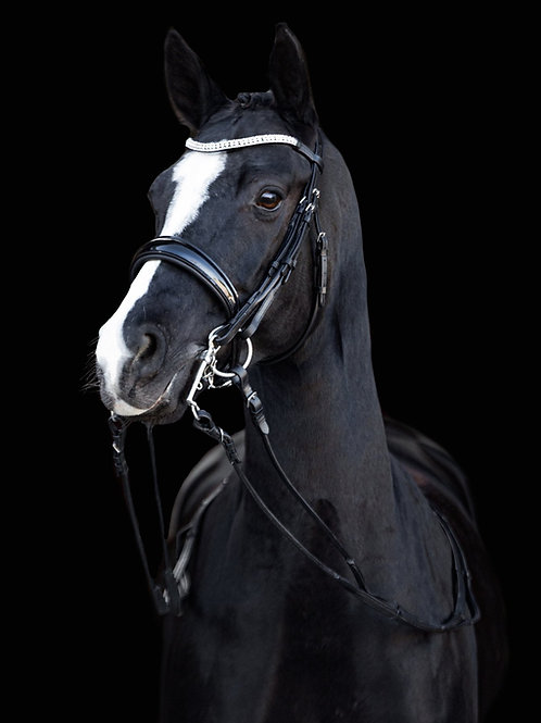 """Lumiere """"Amie' Rolled Double Bridle"""