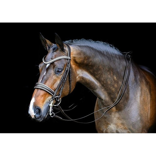 SD Celebrity Double Bridle w/Crystal Rocks--Full