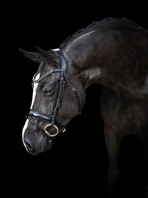 """Lumiere """"Audrey"""" Black Snaffle Bridle, Rolled leather"""