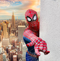 Superheld Spiderman buchen