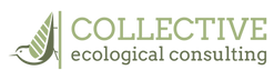 CEC_Logo_Horizontal_Color_PNG.png