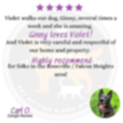 Ginny Review.jpg