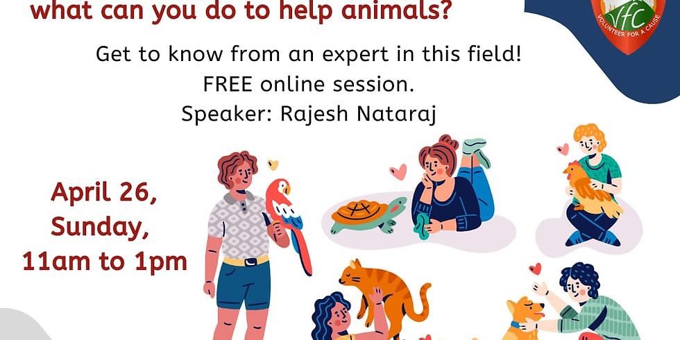 Animal Welfare, Rescue Aid & COVID-19
