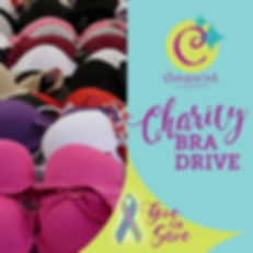 Curvaceous_CharityBraDrive_2019-12-05.jp
