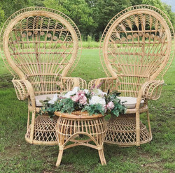 Peacock Chairs + Table