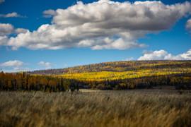 Cedar Mountain Fall by Lava Beds