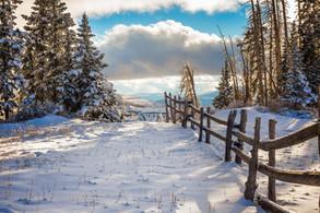 Snow Mountain Fence