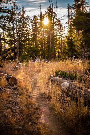 Trail at Crystal Springs