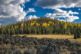 Cedar Mountain Fall by Lava Beds 2