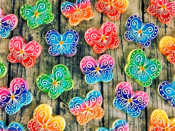 rainbow butterflies cookie collection_edited.jpg