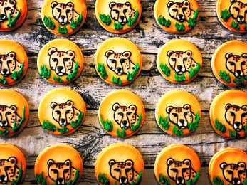 cheetah cookie collection_edited.jpg