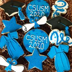 graduation cookie collection.jpg
