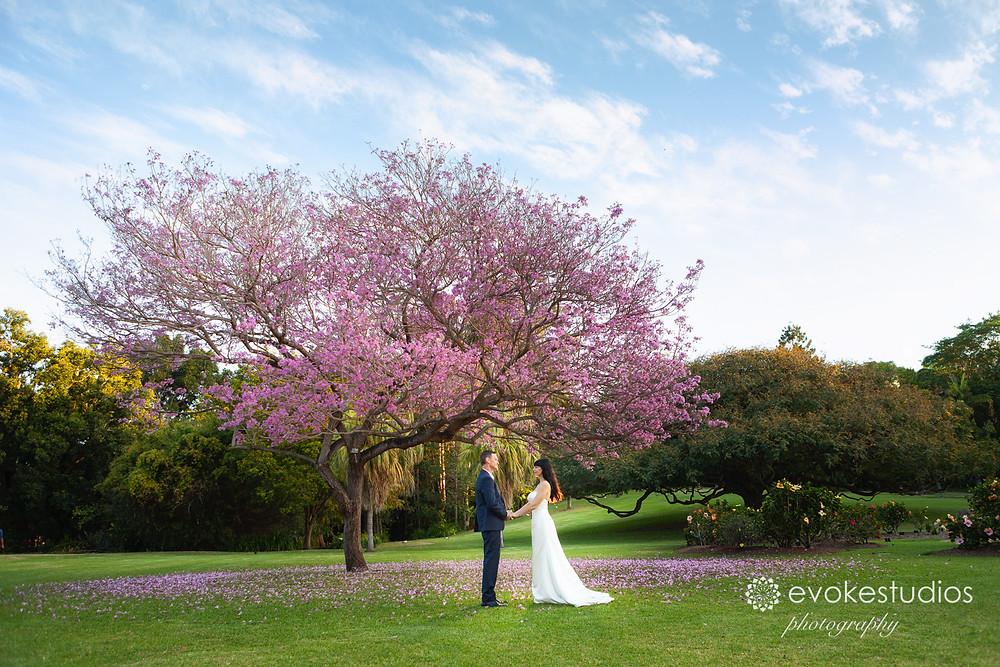 Botanical gardens wedding photographer