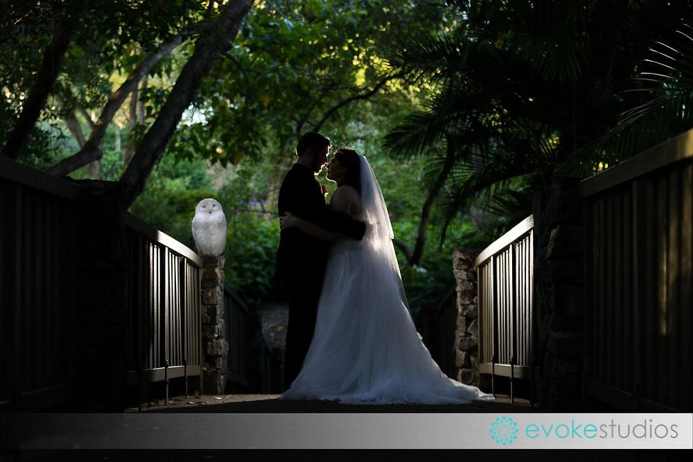 Wedding photograhpy