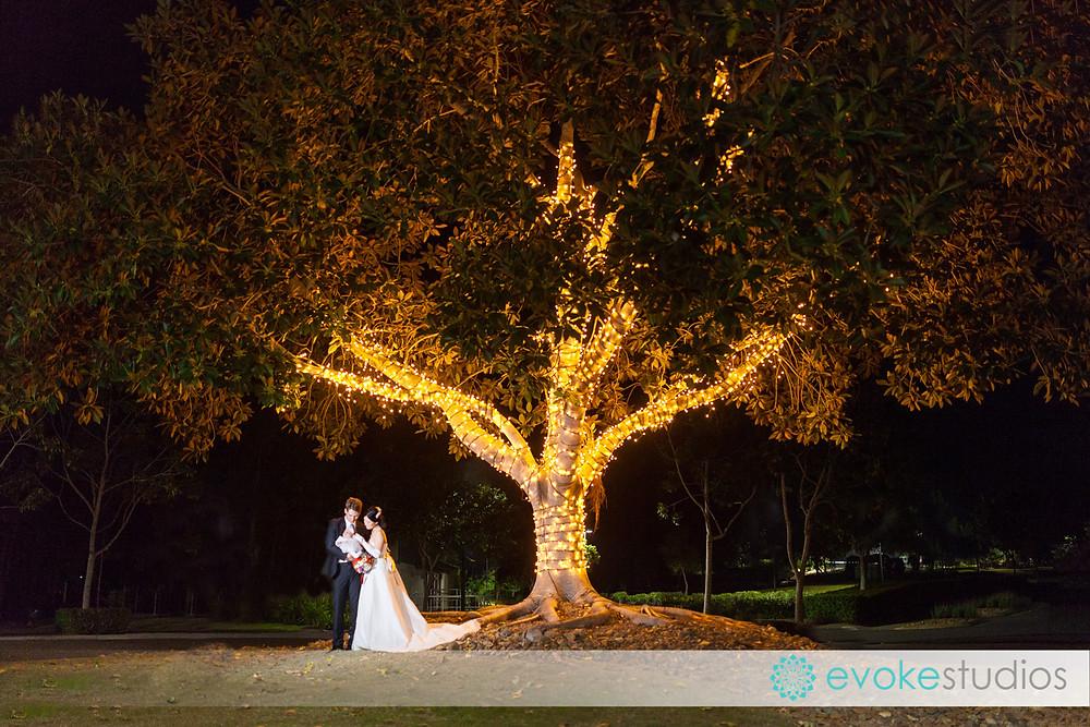 Wedding photography night