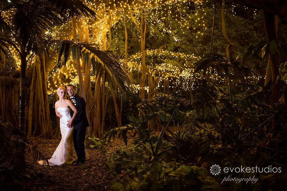 Fairy light photography