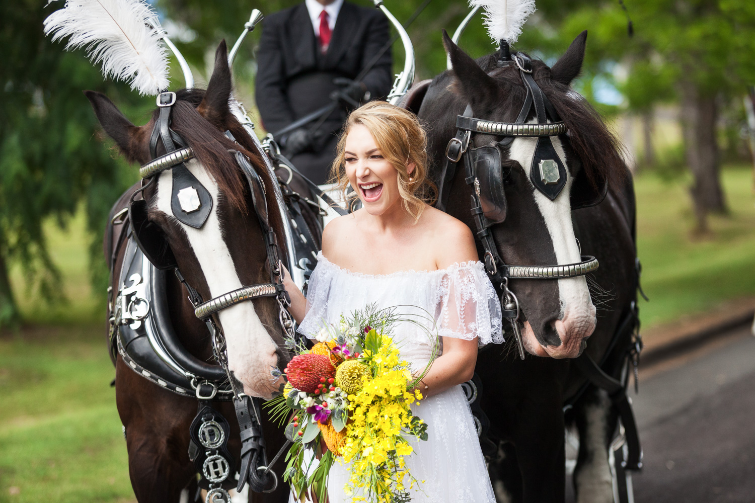 Country wedding boonah horses