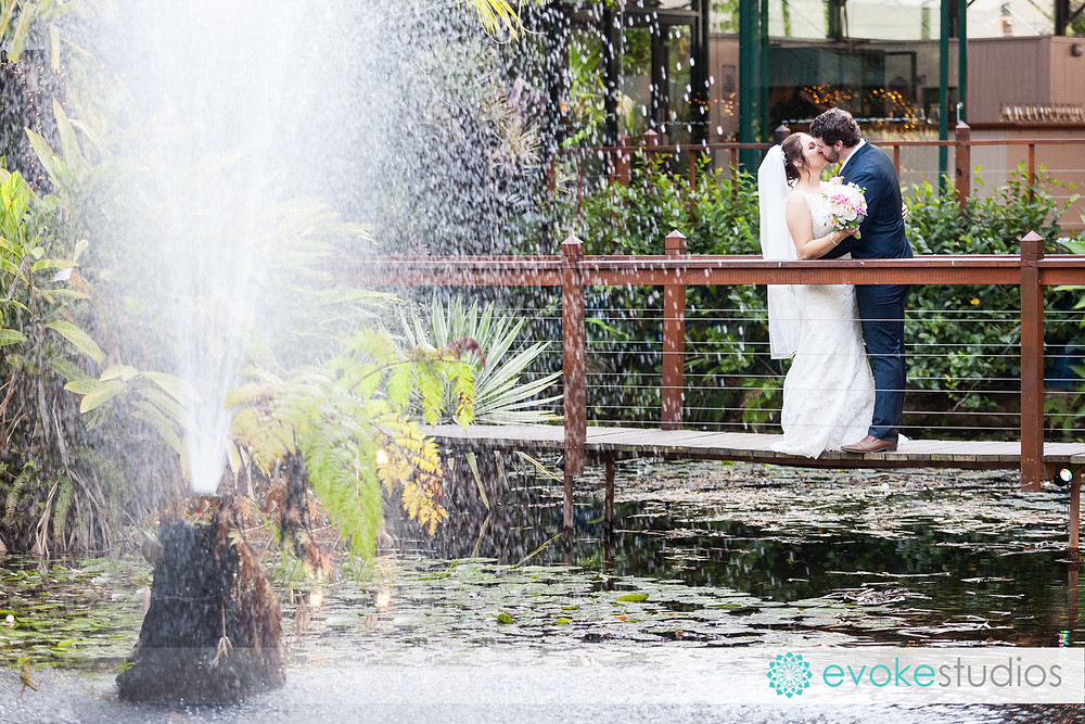 Sol gardens wedding photography