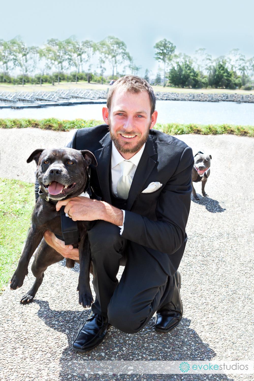 Dog pageboys