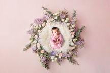 LilacNest3HR.jpg