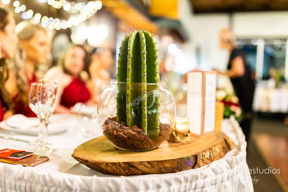 Cactus decore