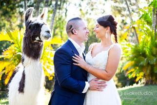 Scott & Kristy-Lee's Abbey Cobaki Wedding