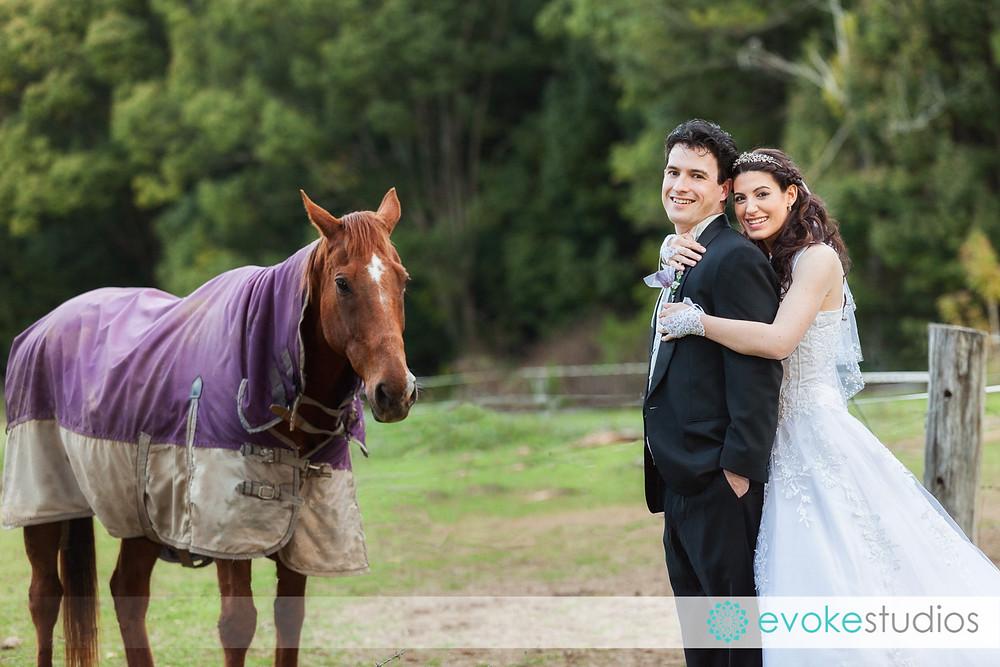 Horse wedding
