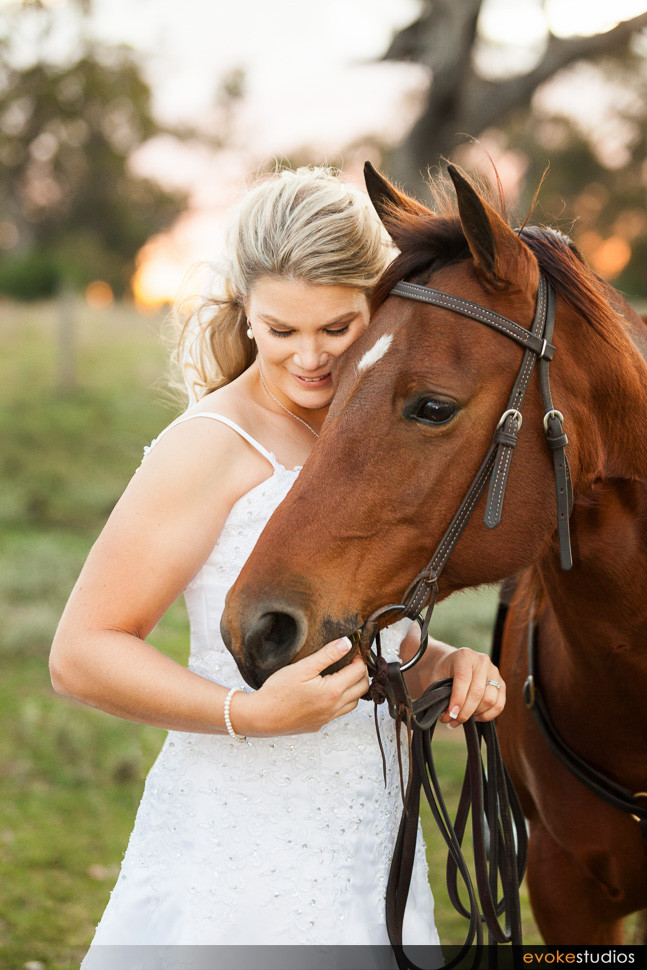 horse and bride