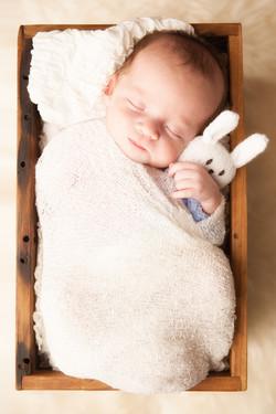 newbornphotos-7