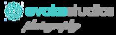 72dpi logo evoke.png