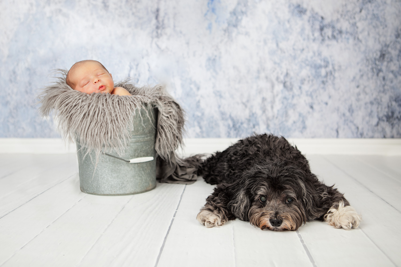 newbornbaby-10