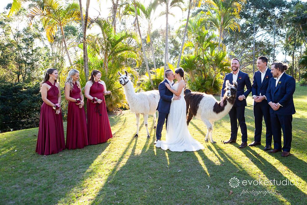 lama bridal party