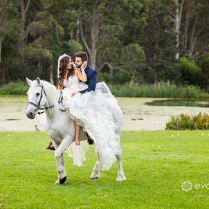 Mat & Danielle's Cedar Creek Wedding