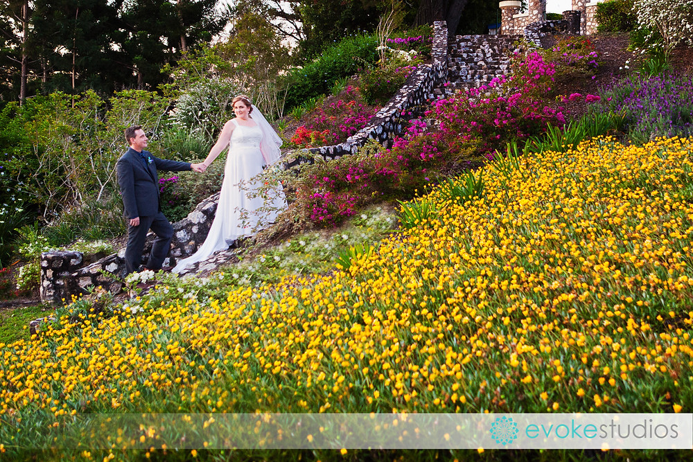 Queens park wedding photographer