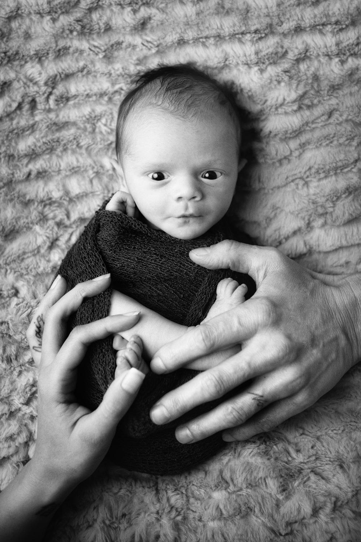 newbornphoto-103