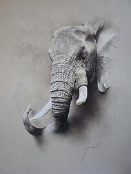Mouclier-Eléphant-pastel_sec-71x91cm.JPG
