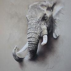 Mouclier-Eléphant-pastel sec-71x91cm (2)