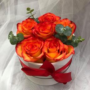Half dozen sunset roses in white round box