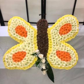 Butterfly/Papillon